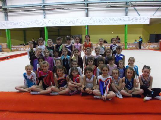 Les gymnastes rhone alpines en stage ce dimanche