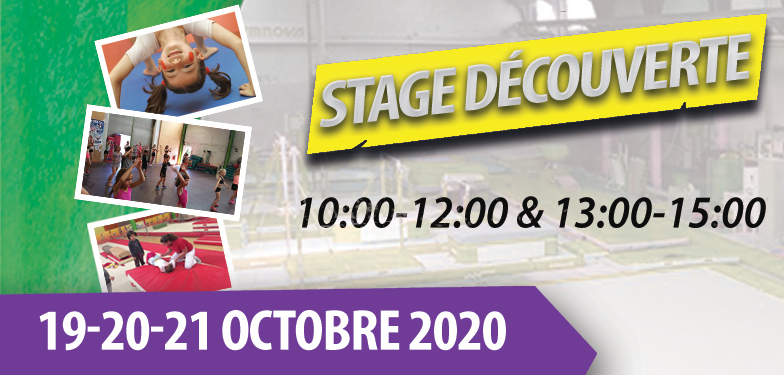 Stage Gym Découverte