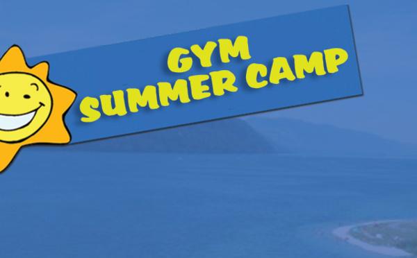Stage Gym Summer Camp